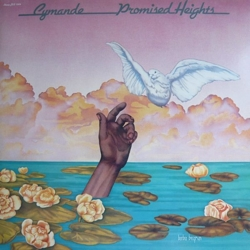 cymandee_promised_heights